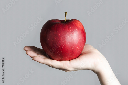 Cuadros en Lienzo red apple big in hand