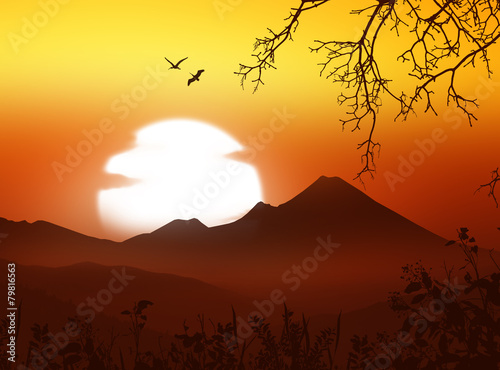 Spoed Foto op Canvas Bruin Beautiful landscape with birds