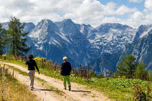 Wanderer in Österreichs Bergwelt
