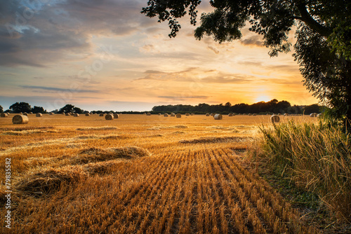Fotografía  Rural landscape image of Summer sunset over field of hay bales