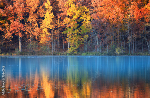 Aluminium Prints Autumn autumn reflections