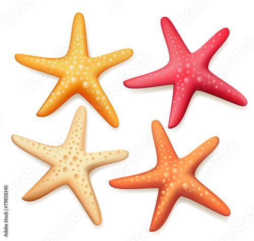 Fotografie, Obraz  Realistic Colorful Starfish Set in White Background