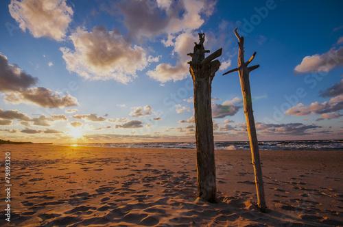 patrząc na zachód słońca - 79893320