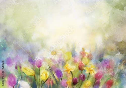 Watercolor flowers painting,daffodils and tulip - 79908586