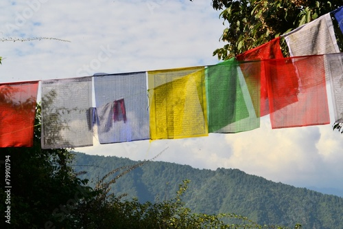 Fotografie, Obraz  Tibetan Buddhist prayer flags