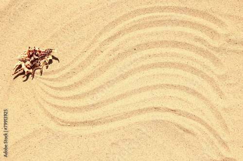 Acrylic Prints Stones in Sand background of sand on the beach