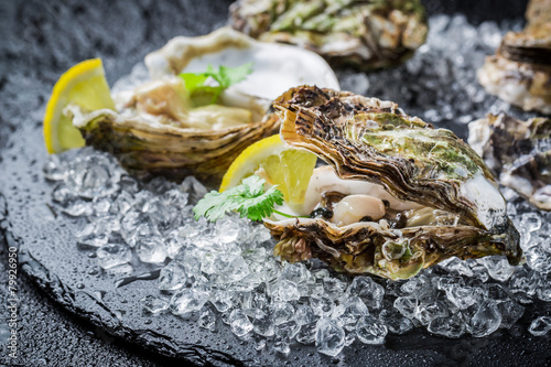 Obraz Tasty oysters on ice with lemon - fototapety do salonu