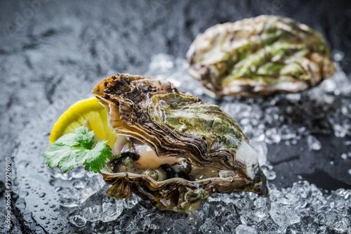 Fototapety, obrazy: Tasty oysters on black rock with lemon