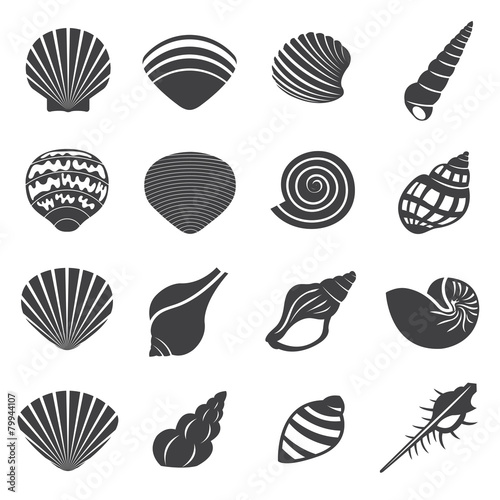 Sea Shell Flat Mono Icons Set Canvas
