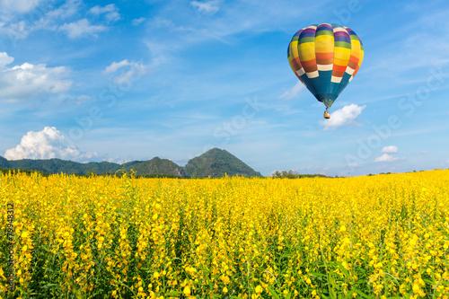 Fotografiet Hot air balloon over yellow flower fields against blue sky