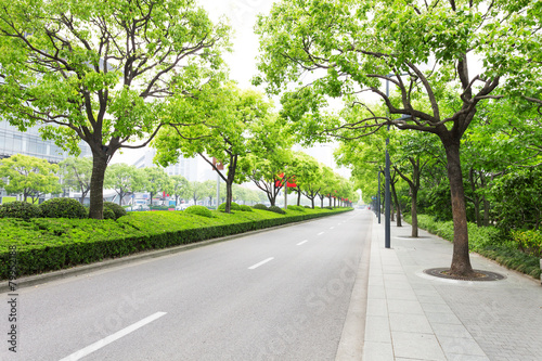 Trees decorated road in modern city