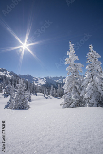 Foto-Schmutzfangmatte - Winterlandscahft (von Netzer Johannes)
