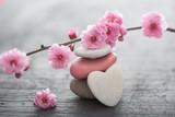Fototapeta Fototapeta w kwiaty - fleurs zen