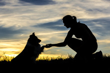 Germany, Woman With Dog, Silhouettes At Sunset
