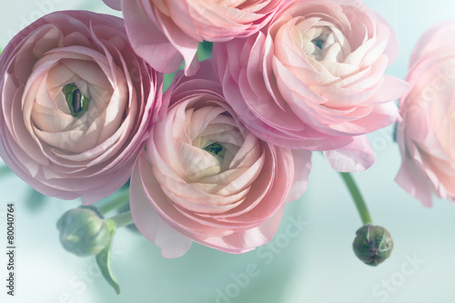Fotografía Bouquet of pink ranunculus in vase