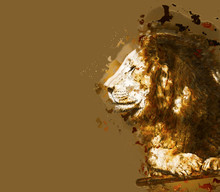 Lion Closeup Portrait. Abstract Illustration. Clipping Path