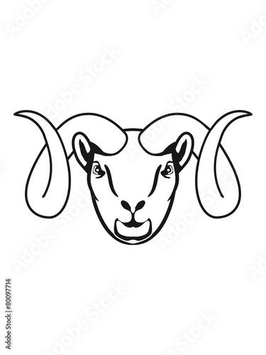 Aries astrology horoscope Canvas Print