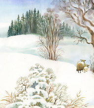 Watercolor Winter Landscape With Sheeps