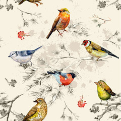Fototapeta vintage seamless texture of little birds. watercolor painting