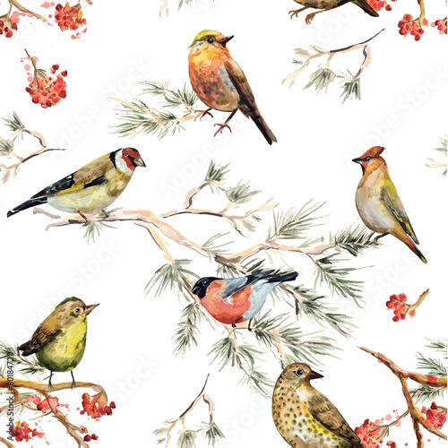 bezszwowa-tekstura-lasowi-ptaki-malarstwo