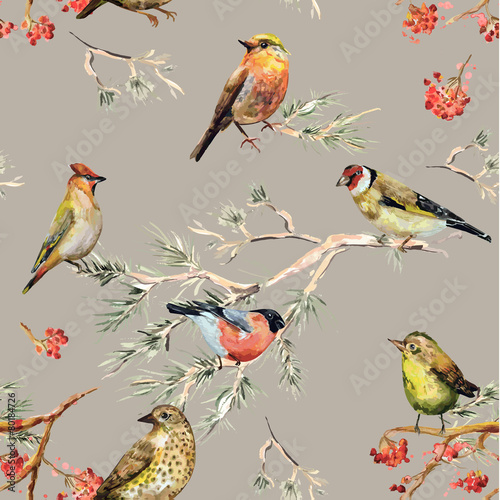 plakat seamless texture of cute birds. watercolor painting