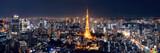 Fototapeta Miasto - Tokyo Skyline