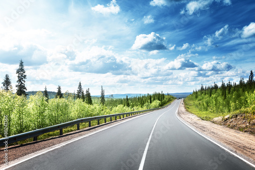 Fototapety, obrazy: road in north forest