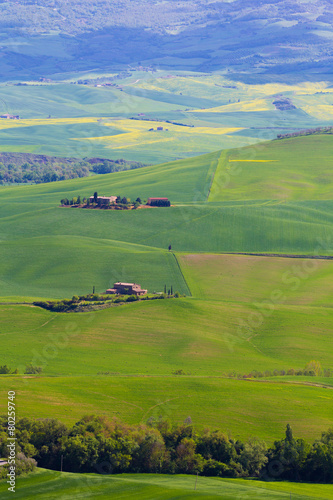 Spoed Foto op Canvas Turkoois Tuscany countryside near Pienza, Italy