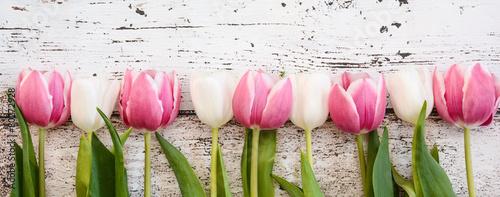 Deurstickers Tulp Blumen