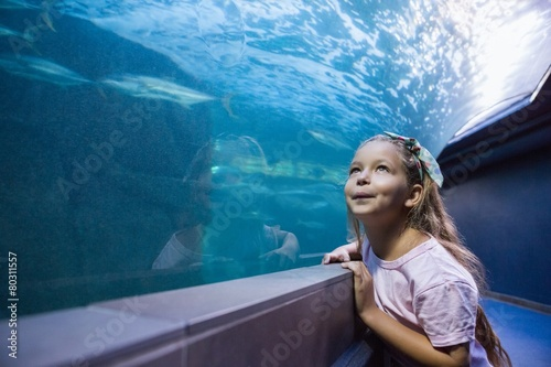 Photo Little girl looking at fish tank