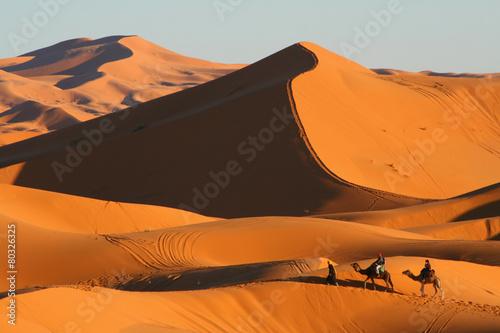 Tuinposter Zandwoestijn balade en dromadaire dans le désert de Merzouga