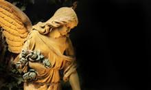 Golden Angel In The Sunlight (...