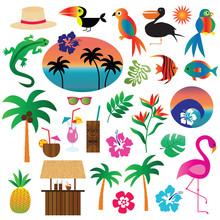 Tropical Clipart