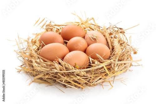 Chicken eggs in nest.