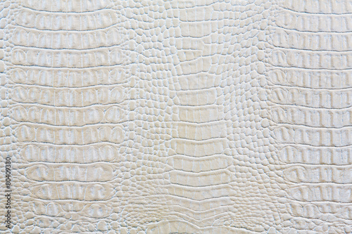 Tuinposter Krokodil Crocodile skin white leather background