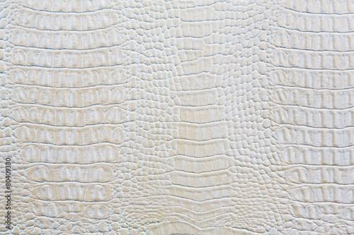 Keuken foto achterwand Krokodil Crocodile skin white leather background