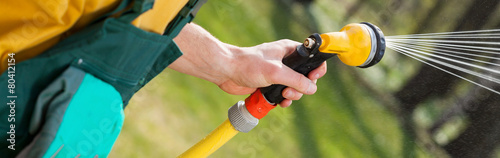Carta da parati Close-up of hose watering grass