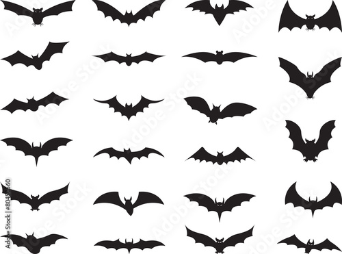 Fotografering Bats collection isolated on white