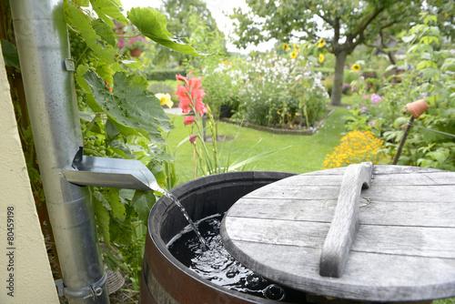 Fotobehang Tuin Regentonne im Garten