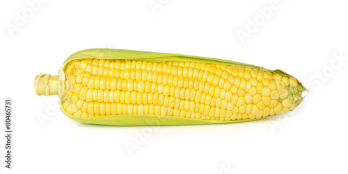 Fotografía  corn isolated on white background
