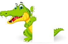 Crocodile Cartoon With Blank S...