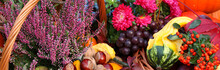 Autumn Flowers, Vegetables And...