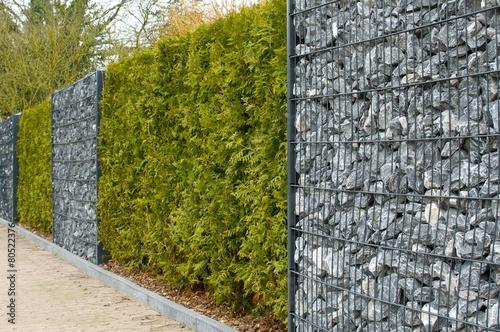 Obraz Zaun mit Hecke, Gambionen und Steine - fototapety do salonu