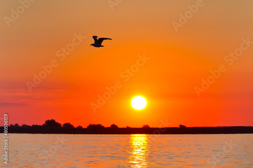 Papiers peints Morning Glory sunrise in the Danube Delta