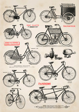 Collection Of Vintage Bicycle ...