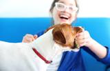 Fototapeta Zwierzęta - Dziewczynka bawi się piłka z psem rasy Jack Russell Terrier
