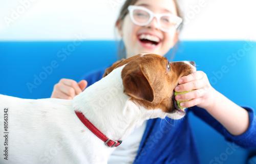 Fototapeta Dziewczynka bawi się piłka z psem rasy Jack Russell Terrier obraz