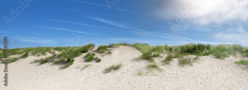 Canvas Print sand dunes near the beach in the summer