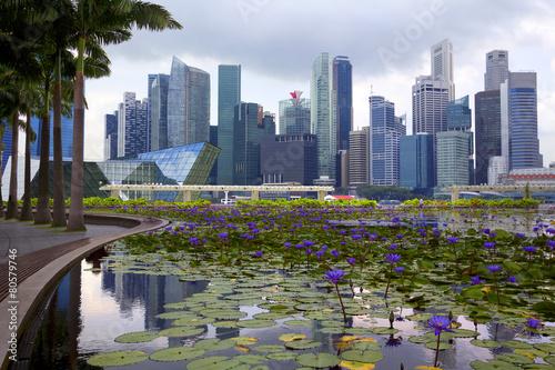 Tuinposter Singapore Сингапур