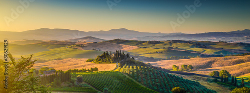 Tuinposter Wijngaard Tuscany landscape panorama at sunrise, Val d'Orcia, Italy